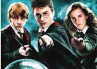 Harry Potter -Duelo con los Mortifagos