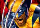 Wolverine Street Fighter